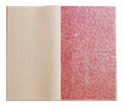 Fingerprints 2008-02